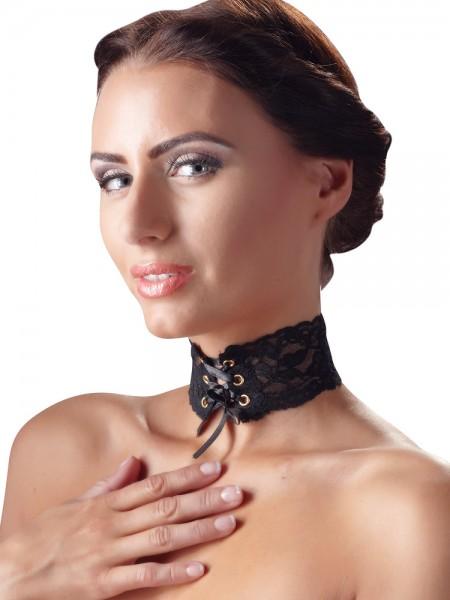 Spitzenhalsband, schwarz